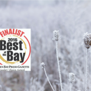 Dental Arts Finalist in Best of the Bay – 2016!